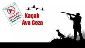 Şanlıurfa'da 164 avcıya ceza yağdı