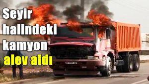 Şanlıurfa'da mısır yüklü kamyon alev aldı