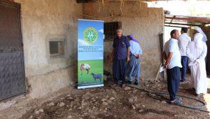 Damızlık Koyun Keçi Yetiştiricileri Birliğinden Uygulamı Bilgilendirme