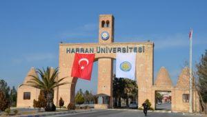 Harran Üniversitesinden yapay zeka eğitim programı