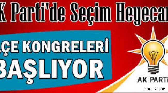 AK Parti'de seçim heyecanı!