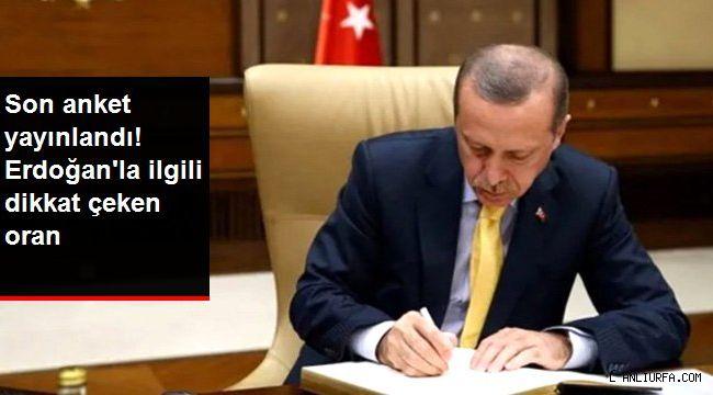 Cumhurbaşkanı Erdoğan'a güven oranı yüzde 54 oldu