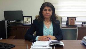 Prof. Dr. Yıldız Zeyrek: Dolaşma, Dokunma, Yaklaşma