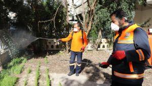 Şanlıurfa Büyükşehir bir yandan ilaçlama diğer yandan sokak hayvanlarını unutmuyor