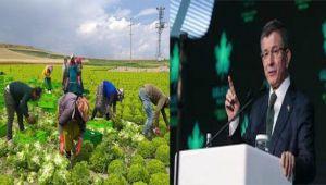 Davutoğlu, Tarım İşçileri Üzerinden Fakıbaba'ya Yüklendi!