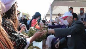 Eski Başbakan Binali Yıldırım Şanlıurfa'da fıstık hasadına katıldı
