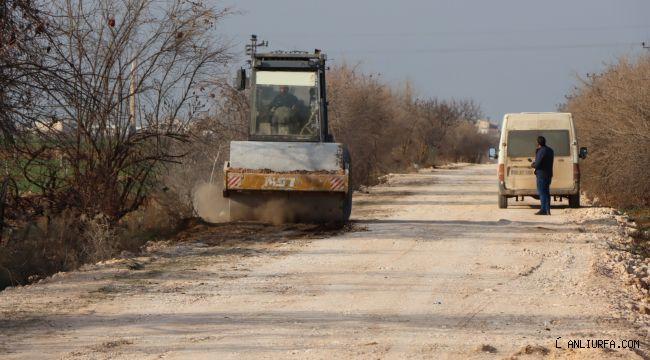 Şanlıurfa Büyükşehir Viranşehir ve Ceylanpınar kırsalına ağırlık verdi
