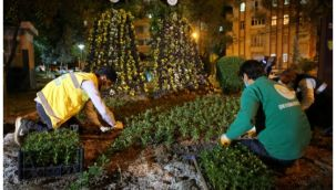 Haliliye'deki parklar peyzaj çalışmalarıyla güzelleşiyor